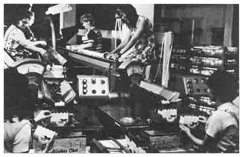 1973 – Anschaffung der ersten Verpackungsstraße für Weichobst