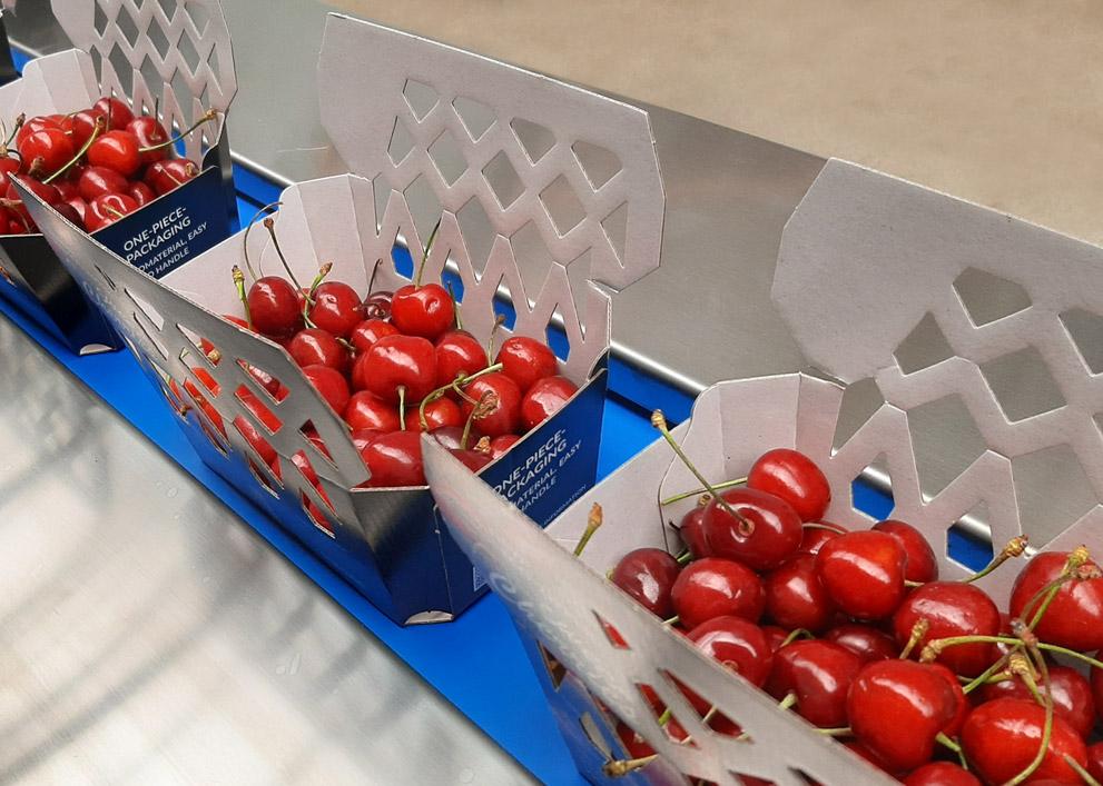 Innovative Verpackungslösung für optimalen Produktschutz von frutmac
